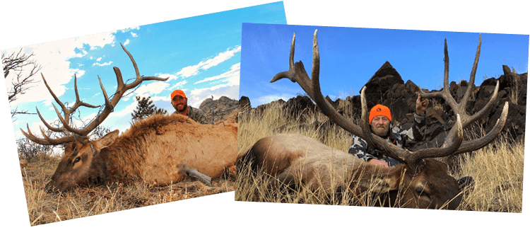 Hunting | Cross C Ranch | Wyoming Outfitter, Wyoming Elk